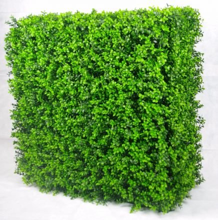 Portable Buxus Hedge Uv Stabilised 75cm X 75cm